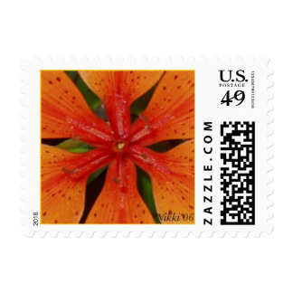 Orange Lily Postage Stamp