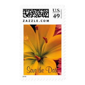 Orange Lily - Save the Date Postage Stamps