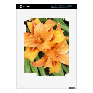 Orange Lily Skins For iPad 3