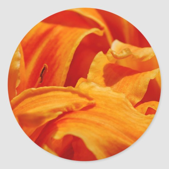 Orange Lily Stickers