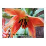 Orange Lily Sympathy Card