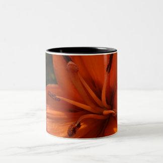 Orange lily Two-Tone coffee mug