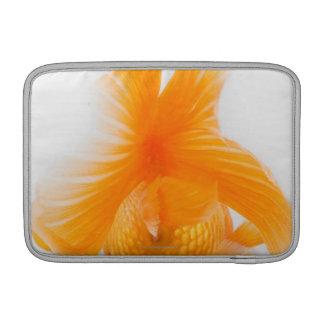 Orange lionhead goldfish (Carassius auratus) 2 MacBook Sleeves