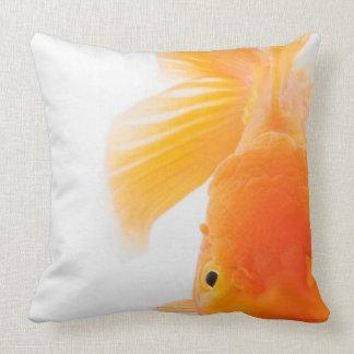 Orange lionhead goldfish (Carassius auratus) Throw Pillows