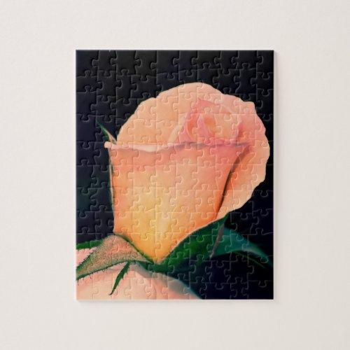 Orange Lomo Rose Puzzle puzzle