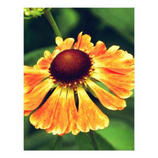 Orange Macro Flower Personalized Letterhead
