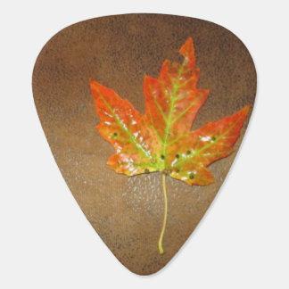 Orange Maple Leaf Guitar Pick