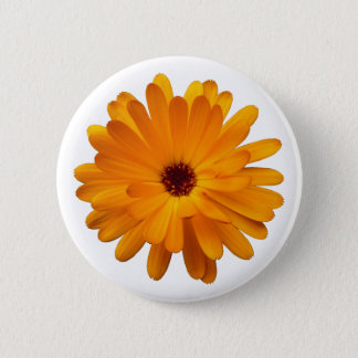 Orange Marigold Button