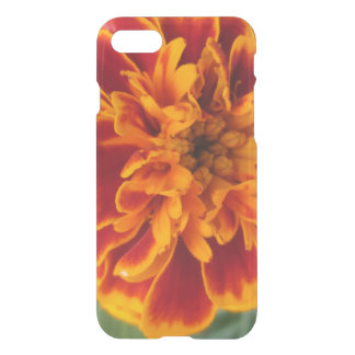 Orange Marigold Flower iPhone 8/7 Case