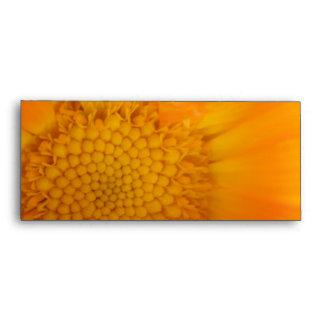 Orange Marigold Macro Envelopes