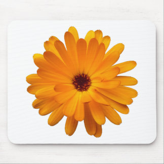 Orange Marigold Mouse Pad