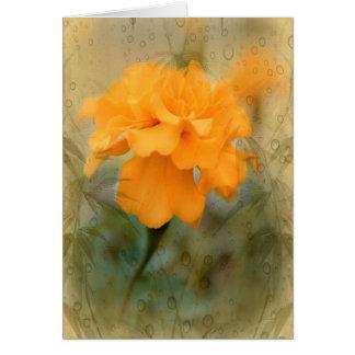 Orange Marigold Note Cards