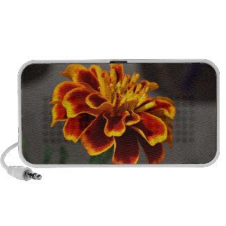 Orange Marigold Portable Speaker