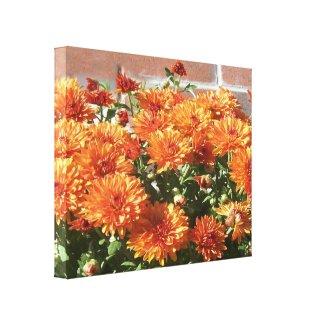 Orange Marigolds Wrapped Canvas Photo Art wrappedcanvas