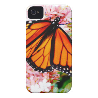 Orange Monarch on pink flowers iPhone 4 Cover