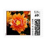 Orange Mum - Postage Stamp