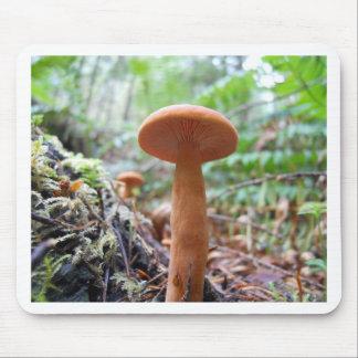 Orange Mushroom Mouse Pad