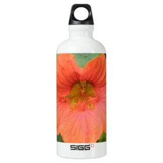 Orange Nasturtium Flower Water Bottle