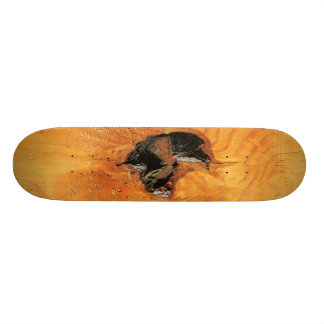 Orange natural wood with black hole and spiderweb skateboard deck