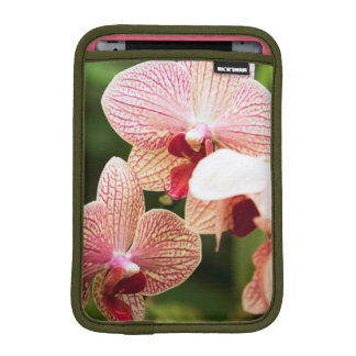 Orange Orchid Hybrid, South Africa iPad Mini Sleeve