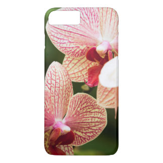 Orange Orchid Hybrid, South Africa iPhone 7 Plus Case