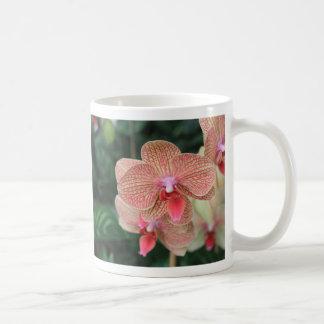 Orange Orchids Coffee Mug