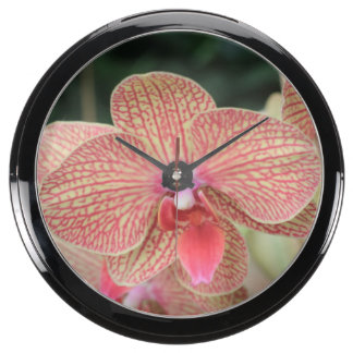 Orange Orchids Fish Tank Clock