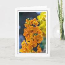 Orange orchids greeting card