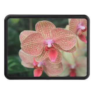Orange Orchids Hitch Cover