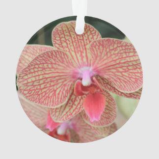 Orange Orchids Ornament