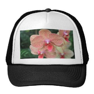Orange Orchids Trucker Hat