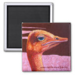 Orange Ostrich Magnets
