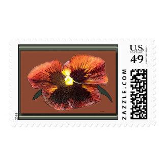 Orange Pansy Postage Stamp