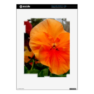 Orange Pansy Skins For The iPad 2