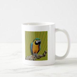 Orange Parrot & Palms mug