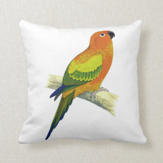 Orange Parrot Pillow No.10