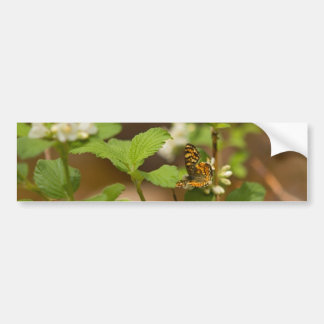Orange Patterned Butterfly Bumper Sticker