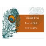 orange peacock wedding Thank You Postcard