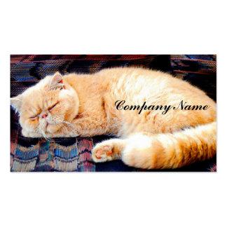 Orange Persian Cat Business Card