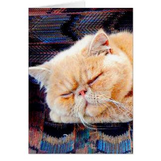 Persian Birthday Cards, Persian Birthday Card Templates ...