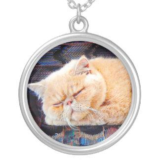Orange Persian Cat Round Pendant Necklace