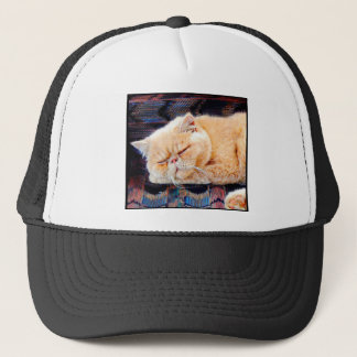 Orange Persian Cat Trucker Hat