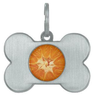 Orange Pet ID Tag