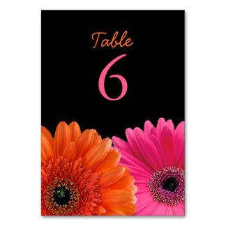 Orange Pink Gerbera Gerber Daisy Black Wedding Table Cards