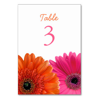 Orange Pink Gerbera Gerber Daisy White Wedding Table Cards
