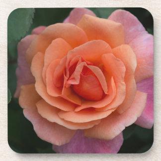 Orange Pinwheel Rose Coaster