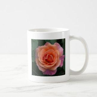 Orange Pinwheel Rose Coffee Mug