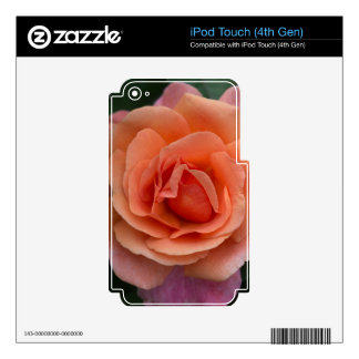 Orange Pinwheel Rose Decals For iPod Touch 4G