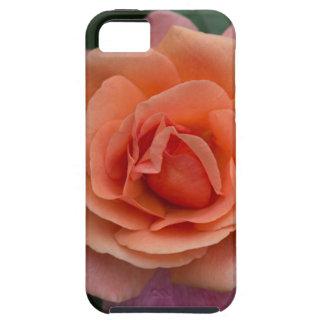 Orange Pinwheel Rose iPhone SE/5/5s Case