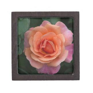 Orange Pinwheel Rose Jewelry Box